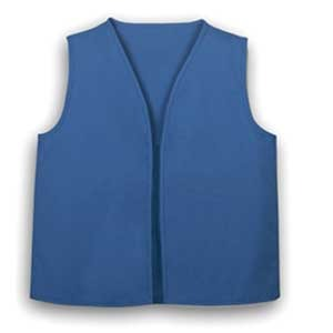 Official-Daisy-Vest-NWT