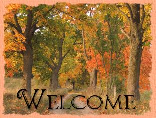 "10 Yards Autumn Fall Leaves Green Acetate Satin Ribbon 1 1//2/""W"