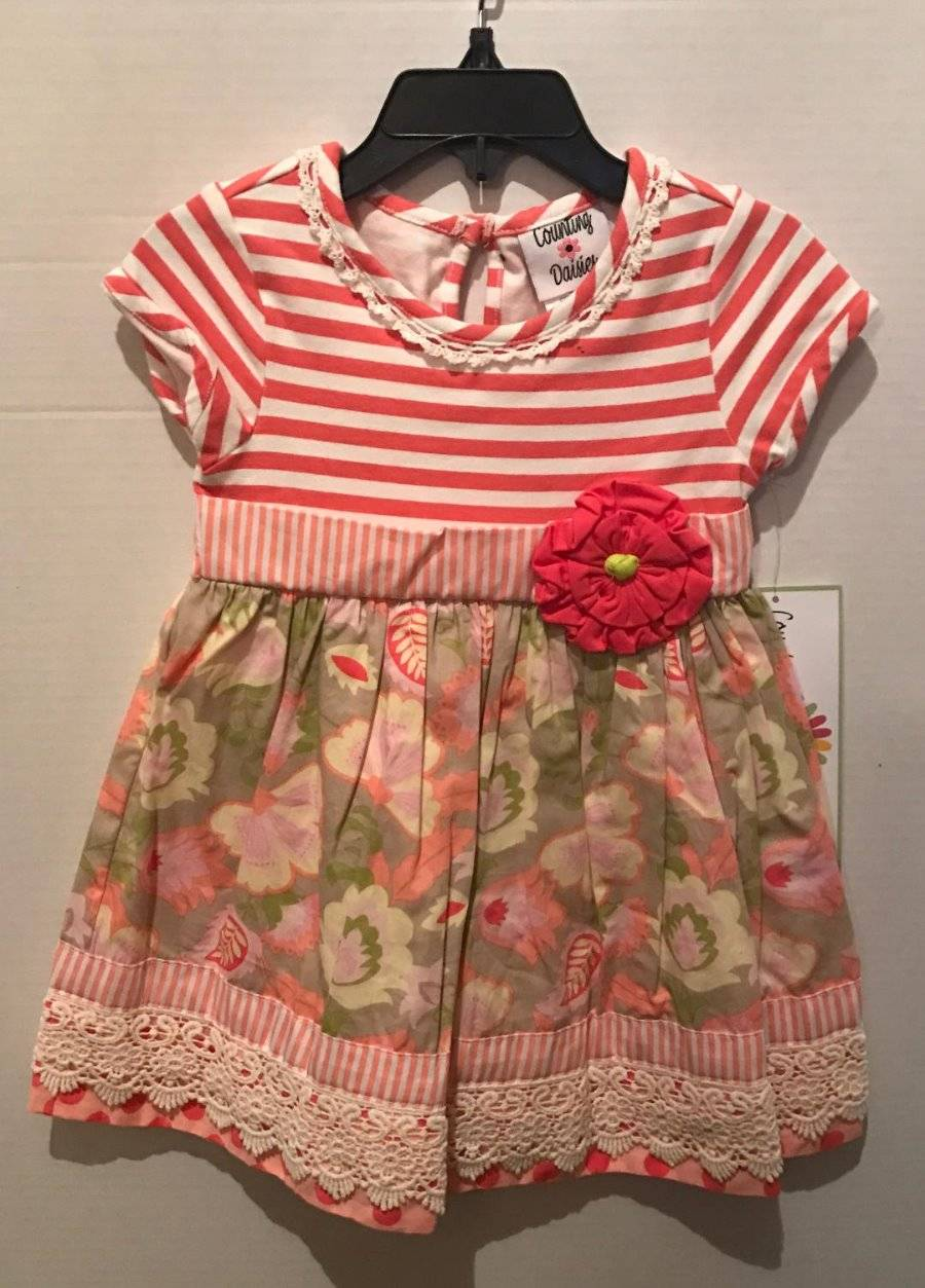 Counting Daisies by Rare Editions Gray Stripe Red Floral Dress  2T//2 3T//3 4T//4