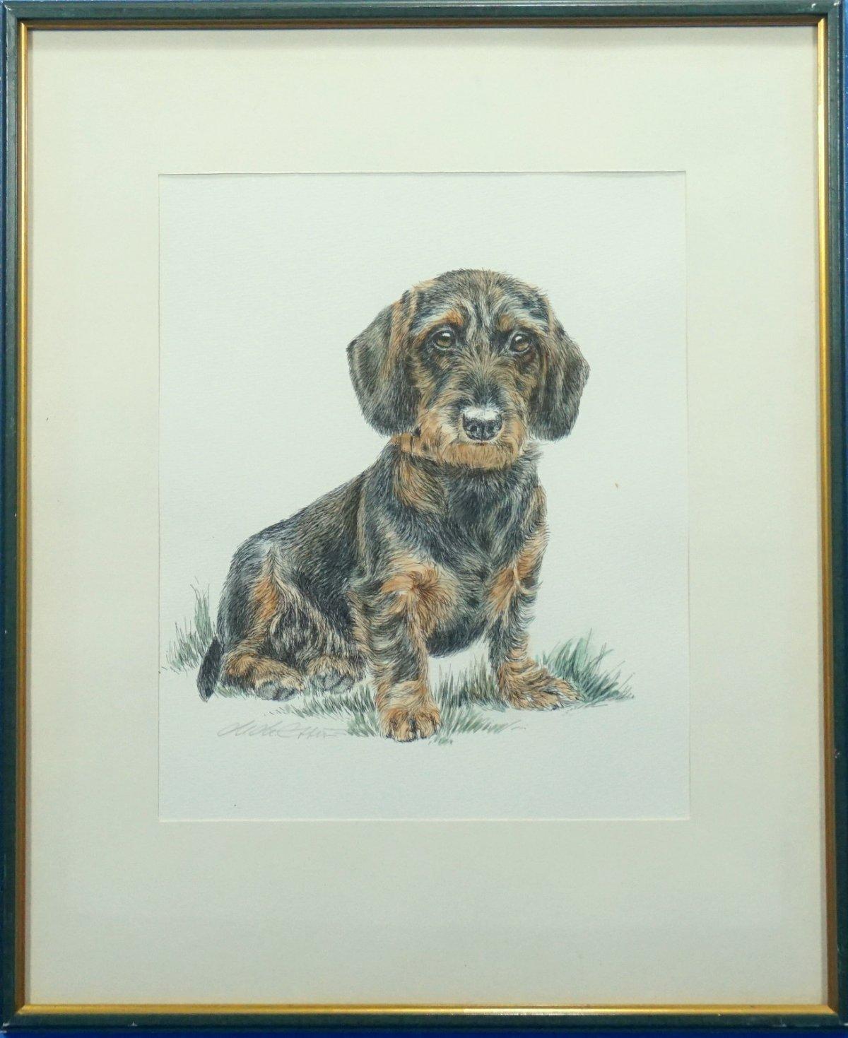 German India Ink Drawing Dachshund Puppy Hunt Dog Artist Sign Frame Matte Glass Ebay